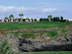 amarilla_golf_20_large
