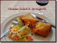 Springroll & Salad sm
