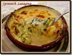 Lasagna B